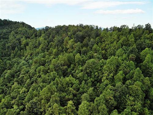 1.58 Acres in Old Fort in McDow : Old Fort : McDowell County : North Carolina