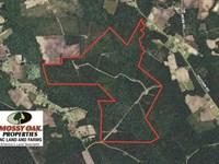 365 Acres of Timber And Hunting LA : Lake Waccamaw : Columbus County : North Carolina