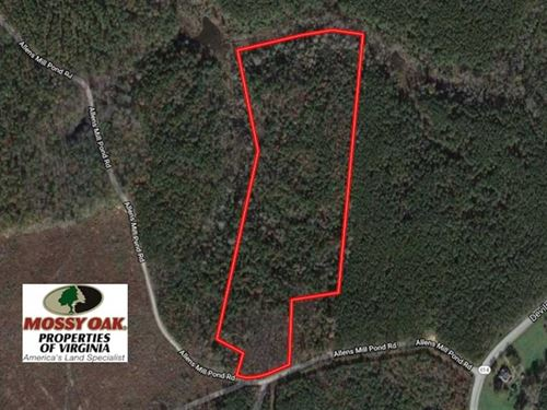 18.5 Acres of Hunting Land For Sal : Little Plymouth : King And Queen County : Virginia