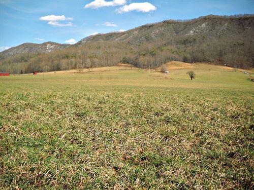 103.98 Acre Farm Land, Barn : Tannersville : Tazewell County : Virginia