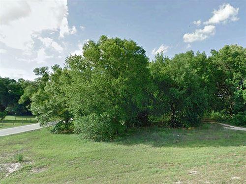 .24 Acre Lot in Webster : Webster : Sumter County : Florida