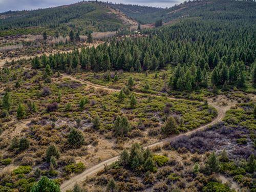 Majestic Rural Residential Land : Sprague River : Klamath County : Oregon