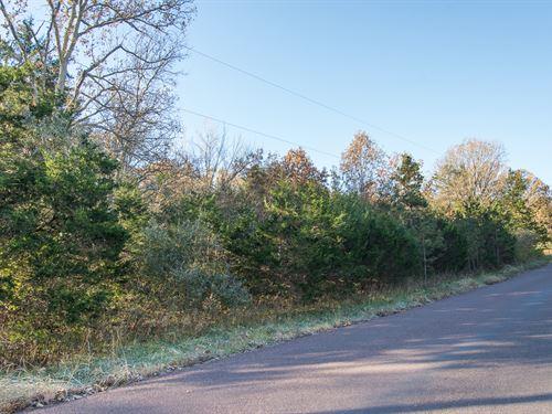 Ideal Residential Homesite : Hillsboro : Jefferson County : Missouri