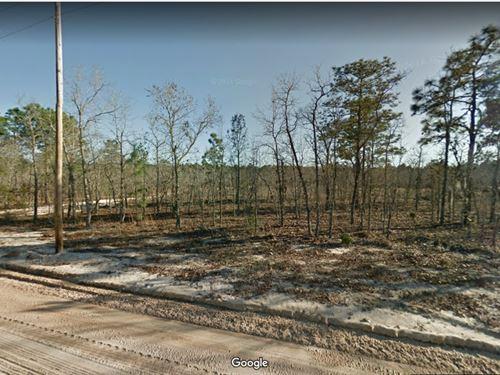 .12 Acres in Putnam County, FL : Interlachen : Putnam County : Florida