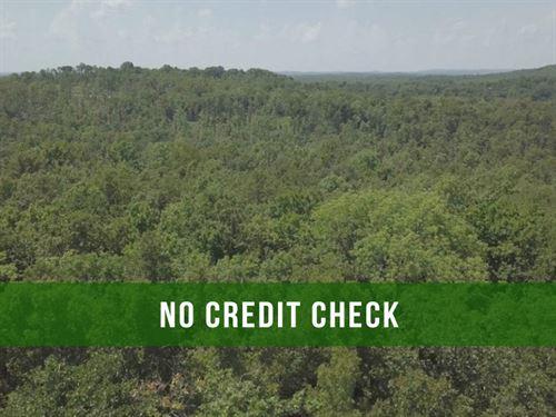 $500 Down on 14 Acres of Rec Land : Ava : Douglas County : Missouri
