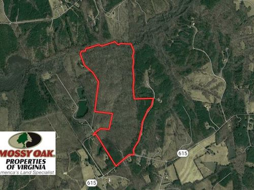 201 Acres Recreational & Residenti : Crewe : Nottoway County : Virginia