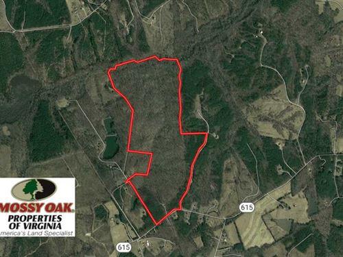 201 Acres Recreational & Residenti : Crewe : Nottoway County : Virginia