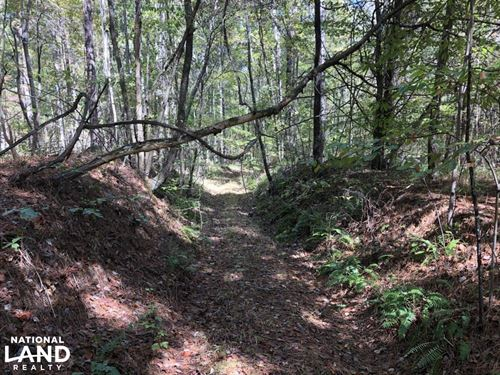 Mature Timber & Land Bid Sale : Smithville : Monroe County : Mississippi