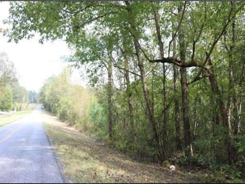8.5 Acres In Newton County In Coneh : Conehatta : Newton County : Mississippi