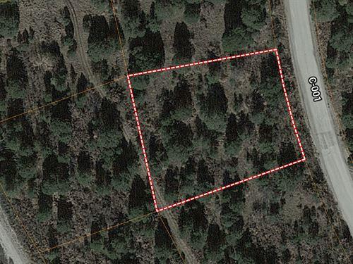 Land For Sale Timberon, New Mexico : Timberon : Otero County : New Mexico