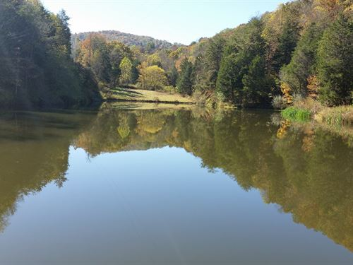 Over 400 Acres WV Land.Fields : Forest Hill : Summers County : West Virginia
