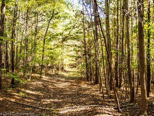 34.2 Acres in Pauline, West Springs : Pauline : Spartanburg County : South Carolina