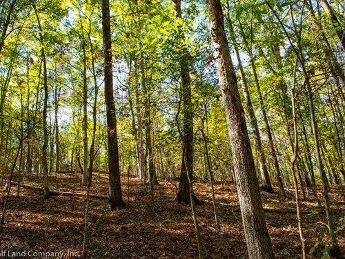 32+/- Acres in Pauline-West Springs : Pauline : Spartanburg County : South Carolina