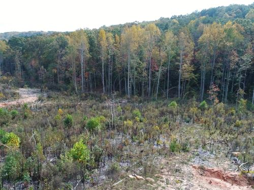 55+/- Acres Great Location : Travelers Rest : Greenville County : South Carolina