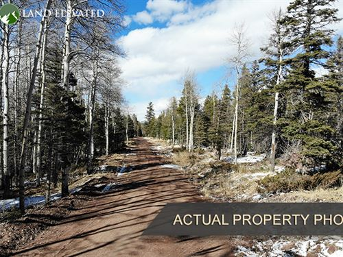 Property For Mountain Cabin : Fort Garland : Costilla County : Colorado
