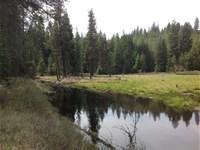 1,234 Acre Recreational Tract Flat : Harvard : Latah County : Idaho