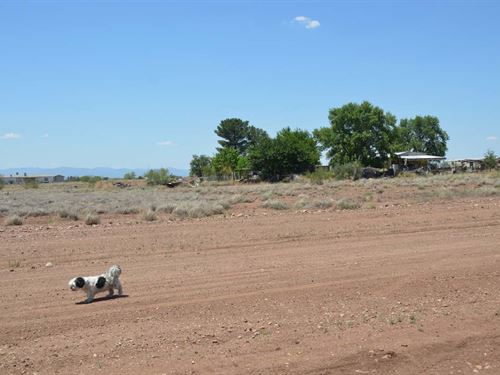 Prime Adjacent Lots,Utilts, $150/Mo : Douglas : Cochise County : Arizona