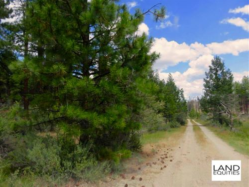 Beautiful Lot in The Woods $149/Mo : Beatty : Klamath County : Oregon