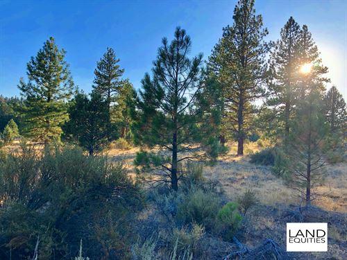 Beautiful Lot In A Great Location : Bonanza : Klamath County : Oregon
