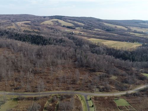 Building Lot on a Private Road : Schuyler : Herkimer County : New York