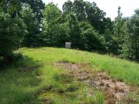 Waterfront Lot on KY Lake 118751 : Big Sandy : Benton County : Tennessee