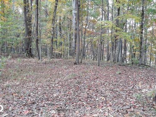 Wooded Home Site Near Watts Bar Lak : Kingston : Roane County : Tennessee
