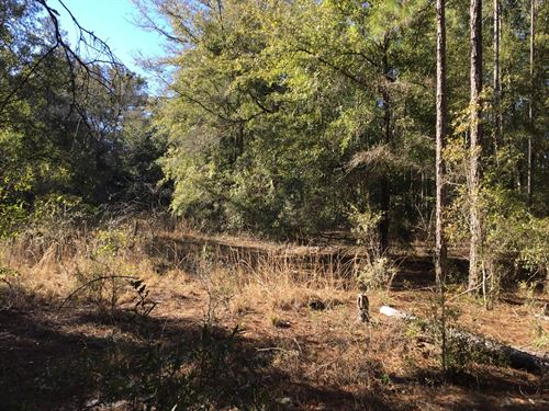 10 Acres For Sale In Fort White, FL : Fort White : Columbia County : Florida