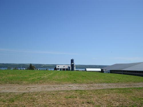 Dairy Farm, 544 Acres, Seneca : Interlaken : Seneca County : New York