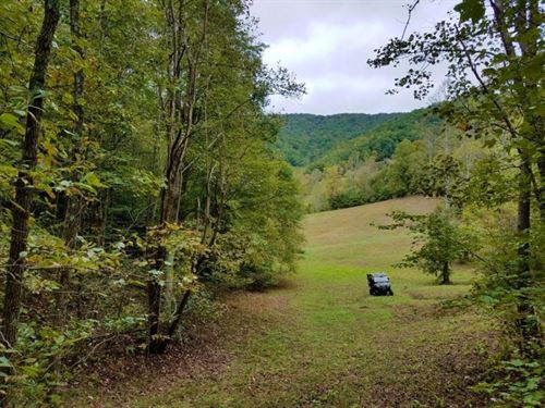 Beautiful 74 Acres : Sneedville : Hancock County : Tennessee