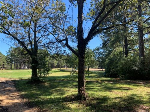 20 Acres In Pike County In Summit : Summit : Pike County : Mississippi