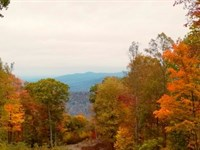 Invest in Land Seller Financing : Mountains : McDowell County : North Carolina