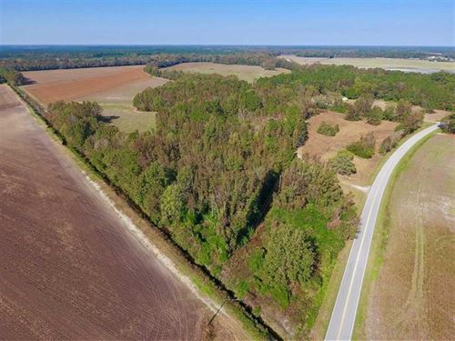 164.75 Acres of Farm And Timber LA : Dover : Craven County : North Carolina