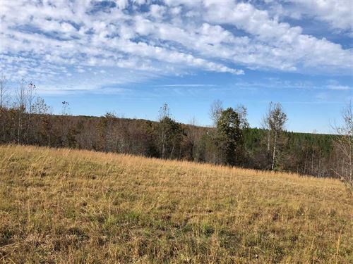 39 Acres Lewis County : Hampshire : Lewis County : Tennessee