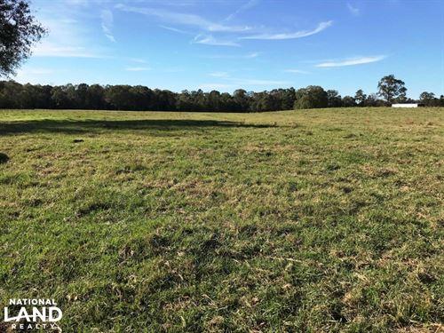Big Creek Cattle Farm And Residenti : Soso : Jones County : Mississippi