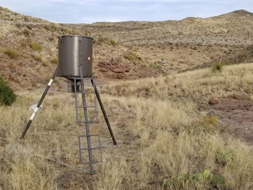 22 Acre Hunting Property : Terlingua : Brewster County : Texas