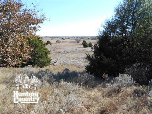 240 Acres M/L, Woods County : Waynoka : Woods County : Oklahoma