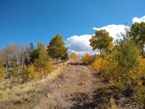 Historic Nash Ranch : Canon City : Fremont County : Colorado
