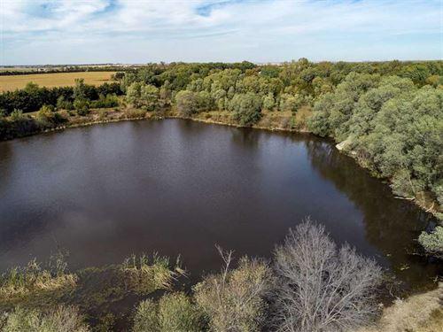 118.41 Acres, More or Less, Antelo : Plainview : Antelope County : Nebraska