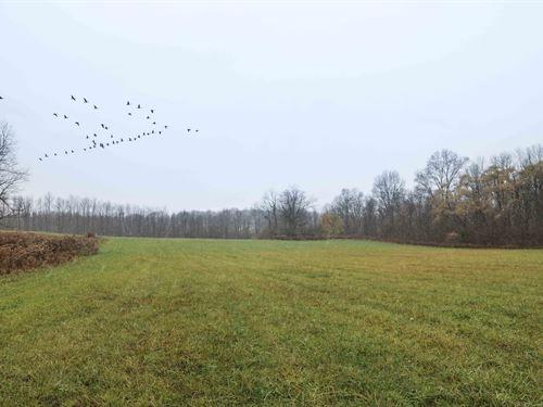 Rolling Meadows And Woods, Frontage : Van Buren : Onondaga County : New York