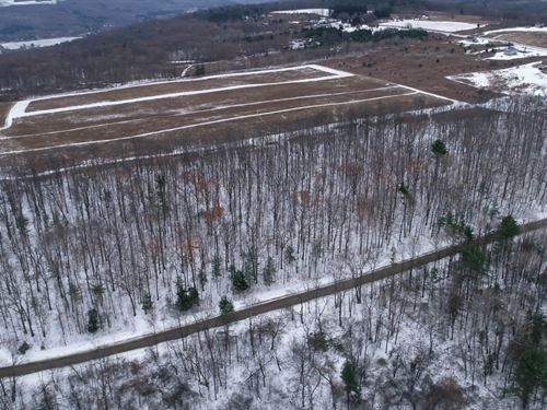 Mature Oaks & Hickories to Build : Hector : Schuyler County : New York