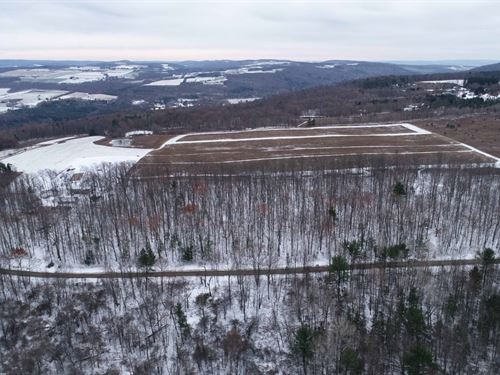 Drilled Well & Mature Trees : Hector : Schuyler County : New York