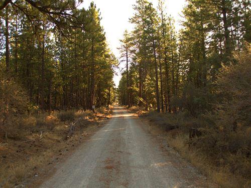 $170/Month Seller Financing : Bonanza : Klamath County : Oregon