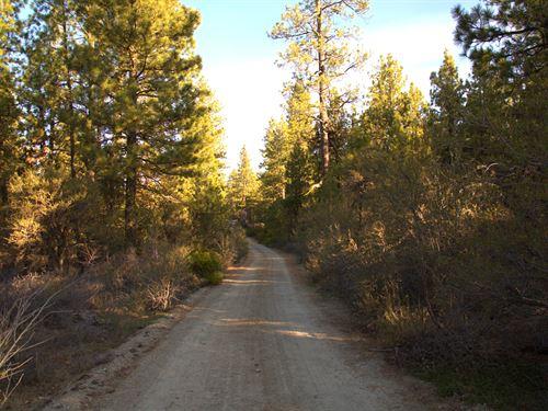 $170 Down, $170/Month Financing : Bonanza : Klamath County : Oregon