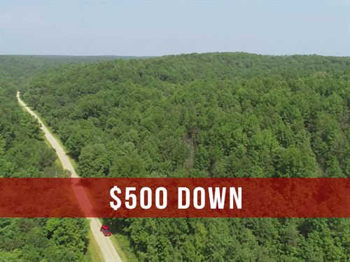 $500 Down on Hunting Land : Birch Tree : Shannon County : Missouri