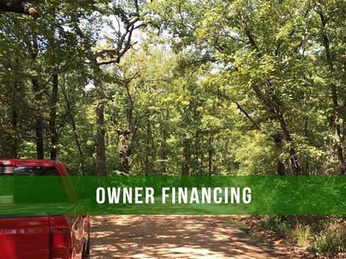 Owner Financed 8+ Acres Of Rec Land : Ava : Douglas County : Missouri