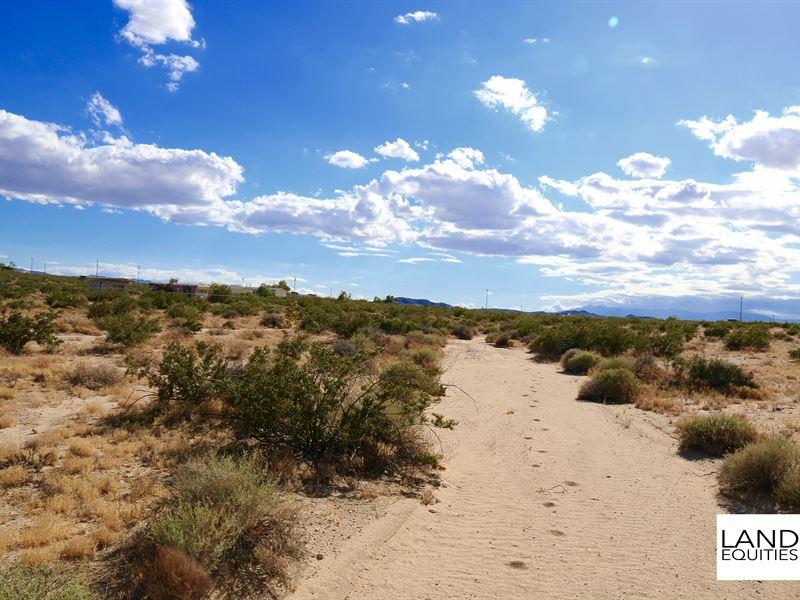 Borders Blm Near Paved Road : Twentynine Palms : San Bernardino County : California