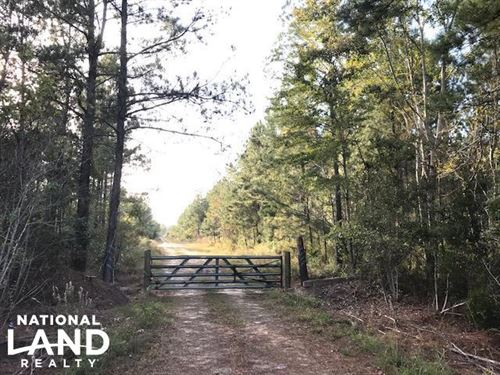 Black Creek Tract : Cross : Berkeley County : South Carolina