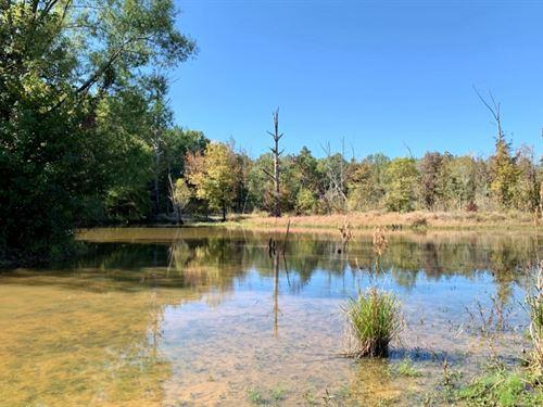 82 Acres In Oktibbeha County In Sta : Starkville : Oktibbeha County : Mississippi