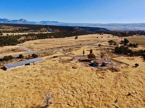 Colorado Country Home 7.49 Acres : Hotchkiss : Delta County : Colorado
