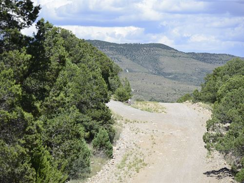 2.27 Acre Wooded Lot With Power : Timberon : Otero County : New Mexico